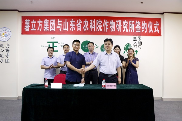 头条!薯立方集团与山东省农科院 签署战略合作协议